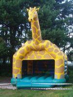 Zamówienie Zamek Żyrafa