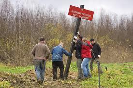 Zamówienie Doradztwo fachowe w przypadkach zniszczenia zieleni-ogłowienia drzew Jelenia Góra