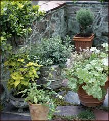 Zamówienie Pielegnacja zieleni ogrodowej