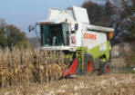 Zamówienie Usługi zbioru kukurydzy