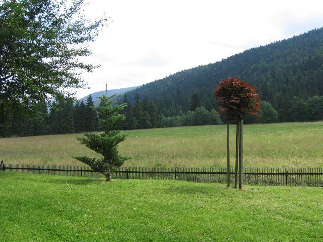 Zamówienie Apartamenty -widok na ogród od strony południowej
