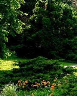 Zamówienie Pielęgnacja całoroczna ogrodów