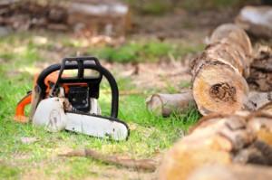 Zamówienie Transport drewna