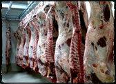 Zamówienie Skup żywca wieprzowego, Skup żywca wołowego