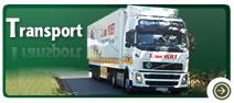 Zamówienie Usługi transportowe na terenie całej Europy Środkowej i Zachodniej