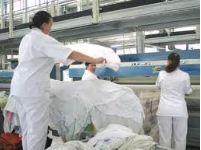 Zamówienie Usługi pralnicze