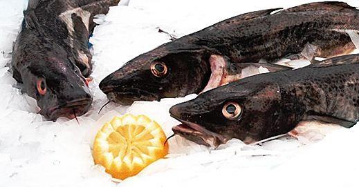 Zamówienie Przetwórstwo ryb