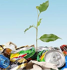 Zamówienie Odzysk odpadów niebezpiecznych i innych niż niebezpieczne.