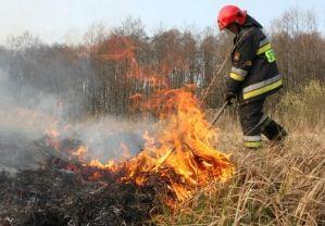 Zamówienie Usługi ochrony przeciwpożarowej