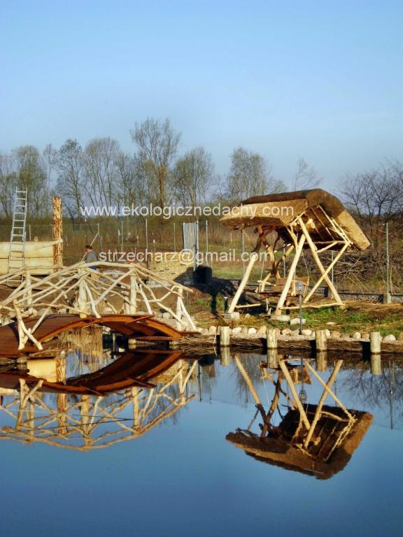 Zamówienie Dachy z trzciny, ekologiczne dachy, dekarstwo trzcinowe