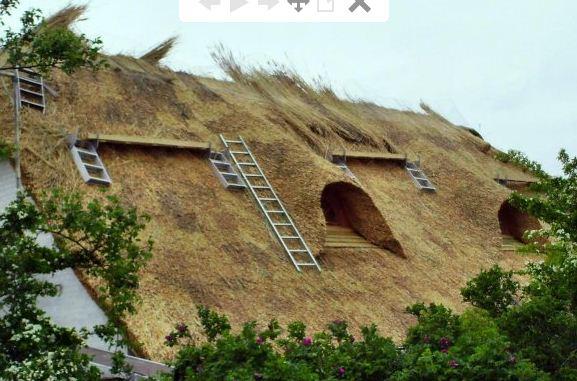 Zamówienie Kładzenie strzechy. Modny dach.