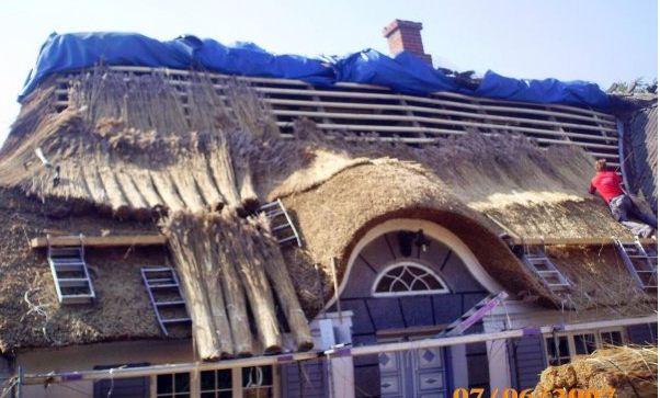 Zamówienie Ekologia w Twoim domu. Dach ze strzechy.