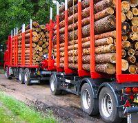 Zamówienie Transport drewna dłużycowego i kłodowanego