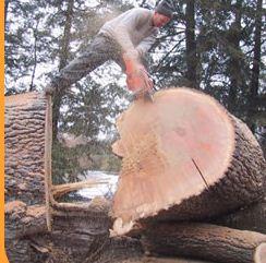 Zamówienie Usługi obróbki drewna.