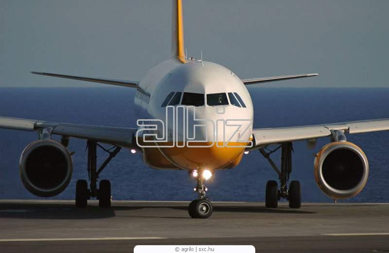 Zamówienie Transport lotniczy