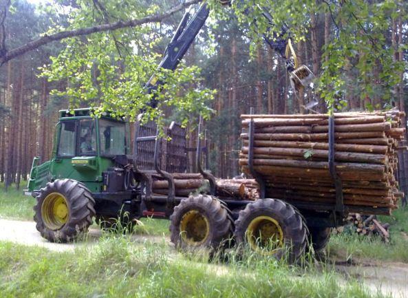 Zamówienie Usługi na terenach leśnych