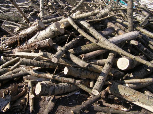 Zamówienie Skup drewna