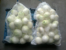 Usługowe obieranie cebuli na biało