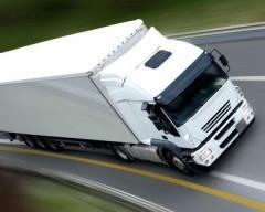 Usługi w zakresie przewozu towarów na wszystkich trasach europejskich