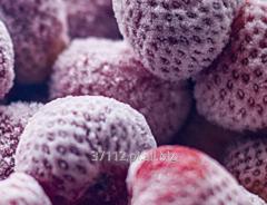 Mrożenie owoców na zamówienie