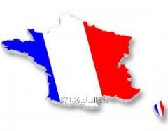 Kurs języka francuskiego