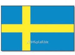 Kurs języka szwedzkiego