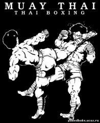 Treningi Muay Thai, K-1, MMA i Boks oraz