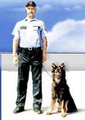 Usługi ochroniarskie