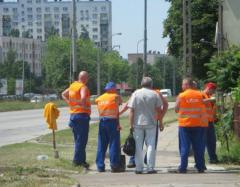 Profesjonalne usługi sprzątania terenów zielonych