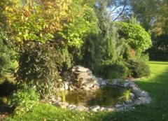 Oczko wodne- projekt i wykonanie