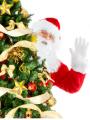 Organizacja imprez- Jarmark Bożonarodzeniowy