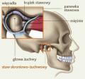 Leczenie zaburzeń narządu żucia