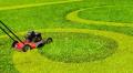 Pielęgnacja terenów zielonych