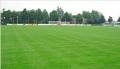 Utrzymanie, przetwarzanie, obsługa trawników sportowych.